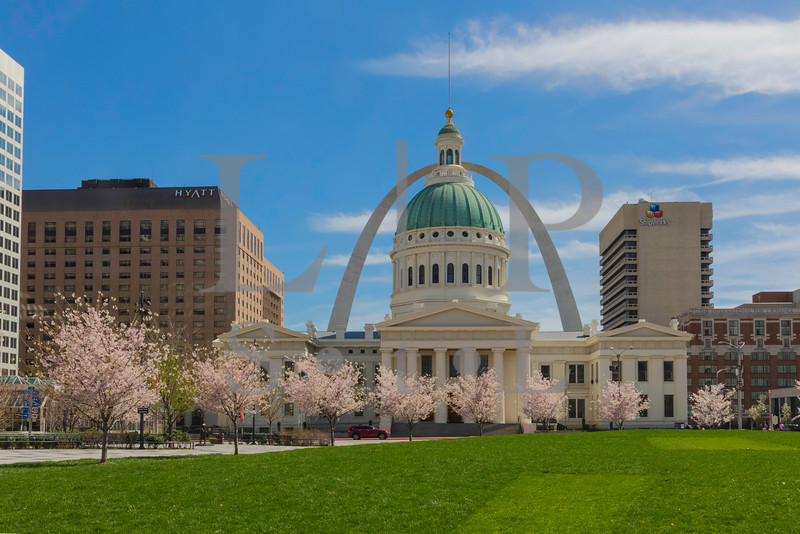Court House Cherry Trees-019-HDR.jpg
