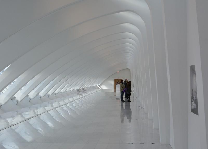Z_CalatravaDec2018 117.JPG