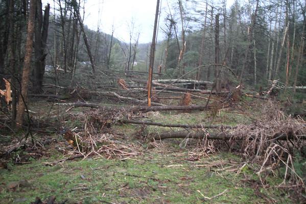 Storm Damage - April 2011