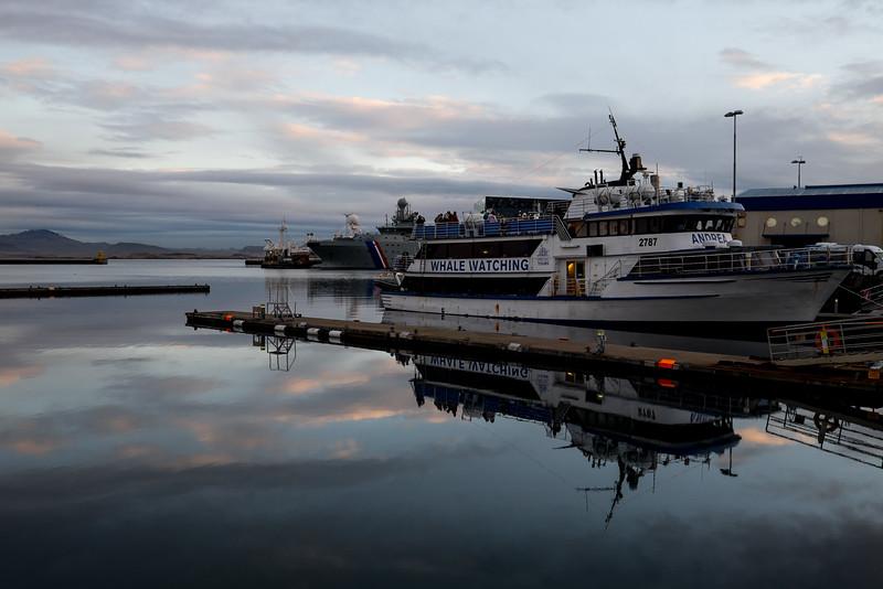 Iceland-161210-83.jpg