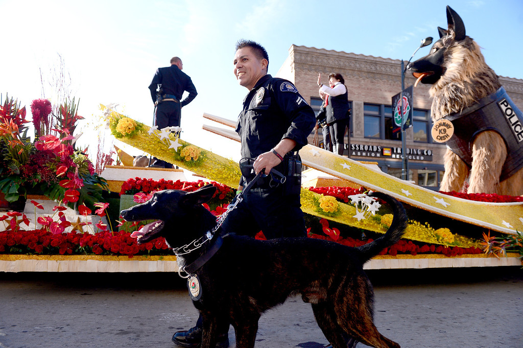 ". K9S4COPS ""Working Together for Safer Communities\"" float heads down Colorado Boulevard during the 125th Rose Parade in Pasadena, CA January 1, 2014. (Photo by Sarah Reingewirtz/Pasadena Star-News)"