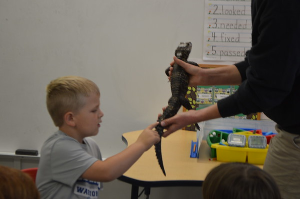 Kindergarten Visit from the Zoo