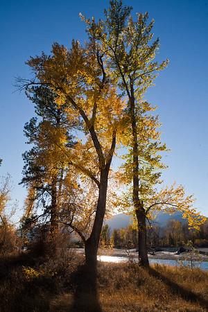 About Montana Art Qwerks