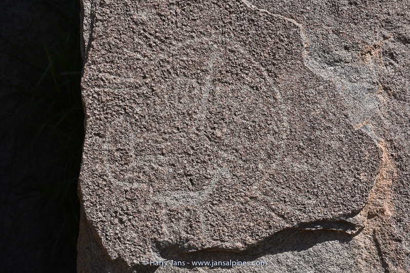 petroglyphs on rocks near Sogay