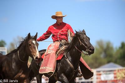 2016 Miles City Bucking Horse Sale