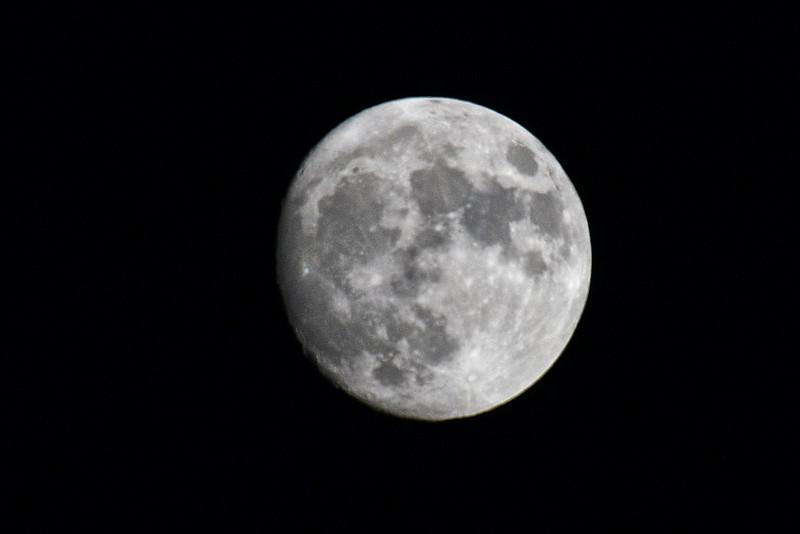 NEA_0616-Moon.jpg