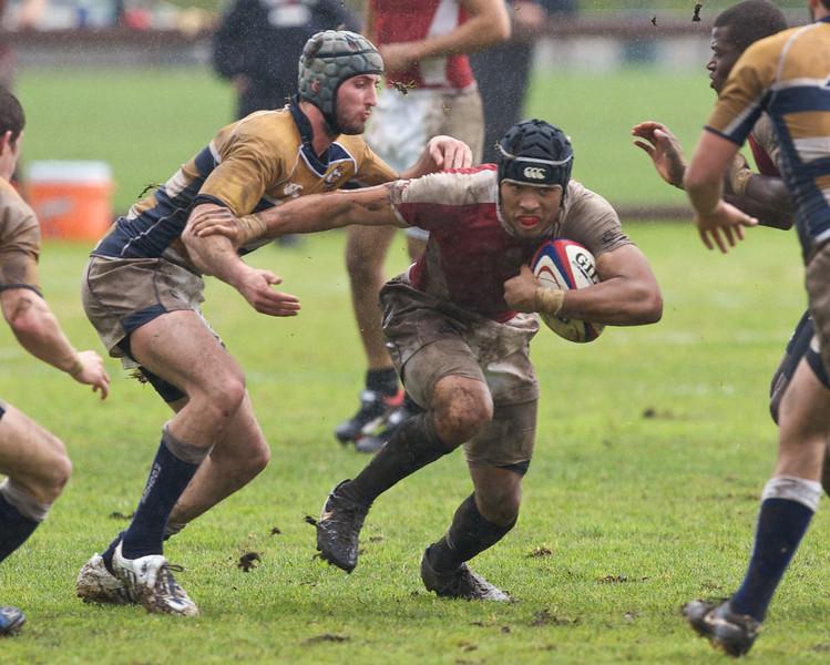 rugby-stanford-davis  9936.jpg