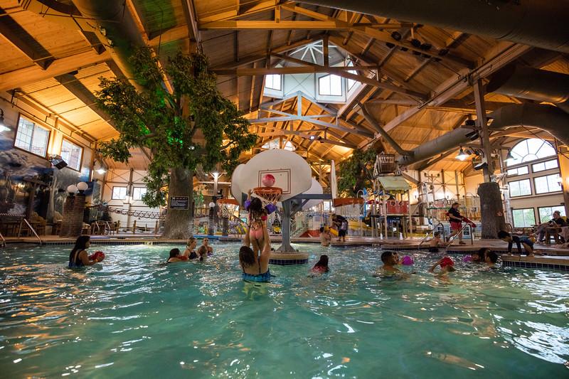 Country_Springs_Waterpark_Kennel-5518.jpg