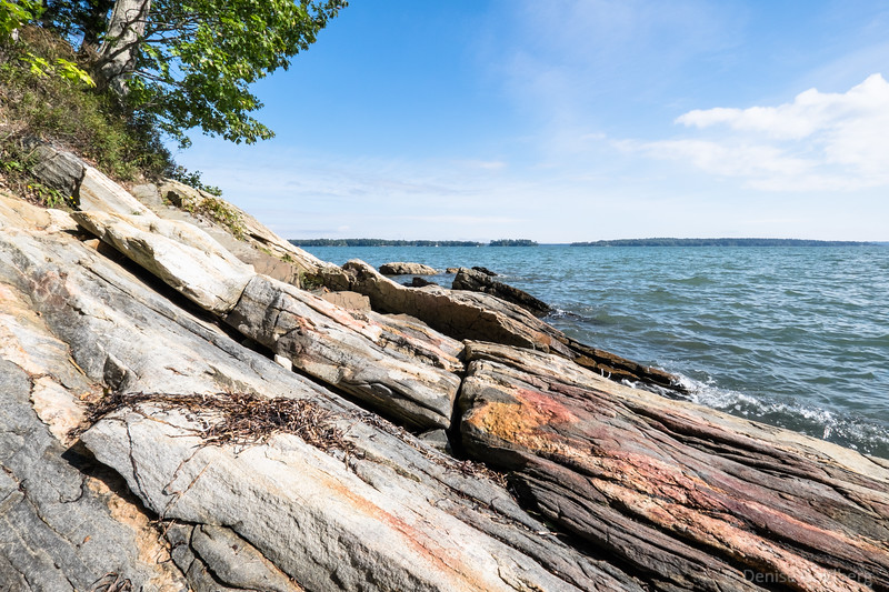 along the coast, in Wolfe's Neck Woods State Park
