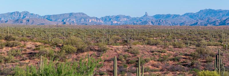Arizona NE Of Phoenix