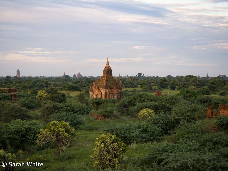 Bagan_101115_443.jpg