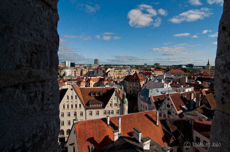 tallinn-estonia-view-1292.jpg