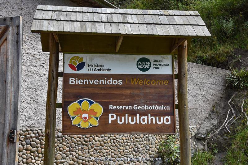 Province of Pichincha,  Pululahua Geobotanical Reserve,
