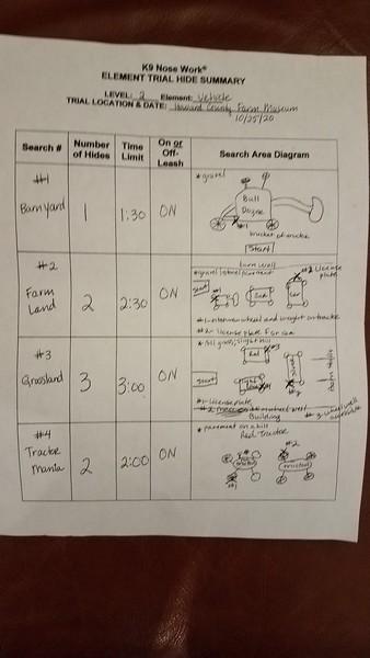 Trial Summary Sheet
