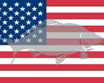 WCC-flag-USA-200x120.jpg