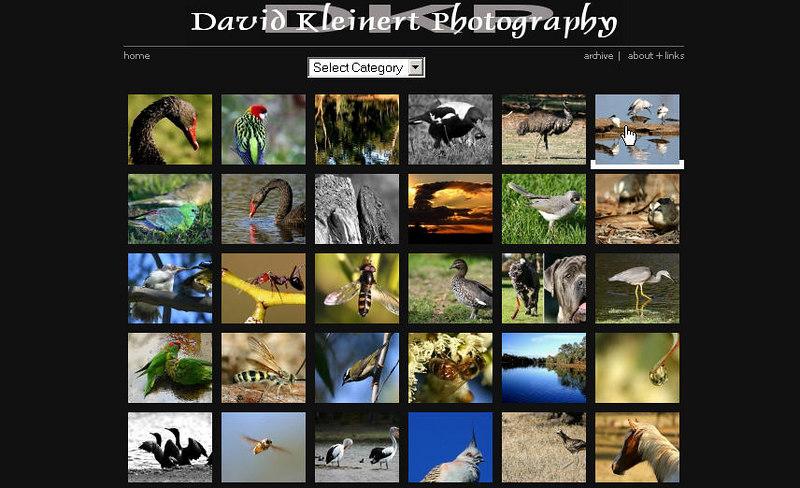 http://davidkphotography.com  Photoblog di David Kleinert, in cui predomina la fotografia naturalistica