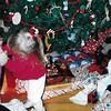 Meg, Ian & Devin Christmas, 2000