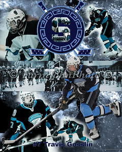 #7 Travis Gosselin Collage Review