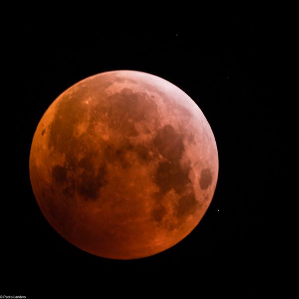 Super Blood Wolf Moon 2