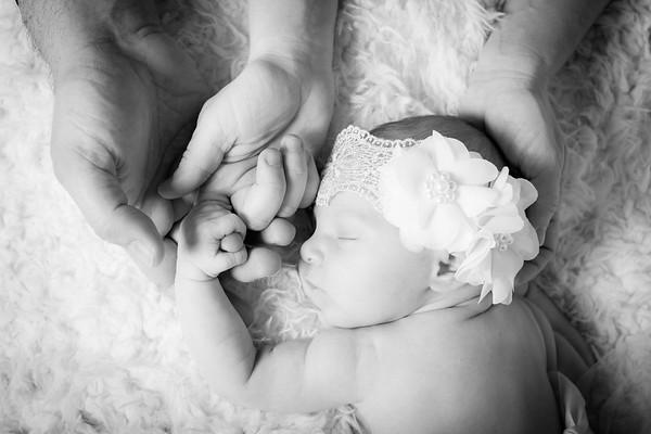 Charlotte Newborn Photoshoot