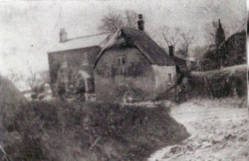 Cottages Badbury c1900