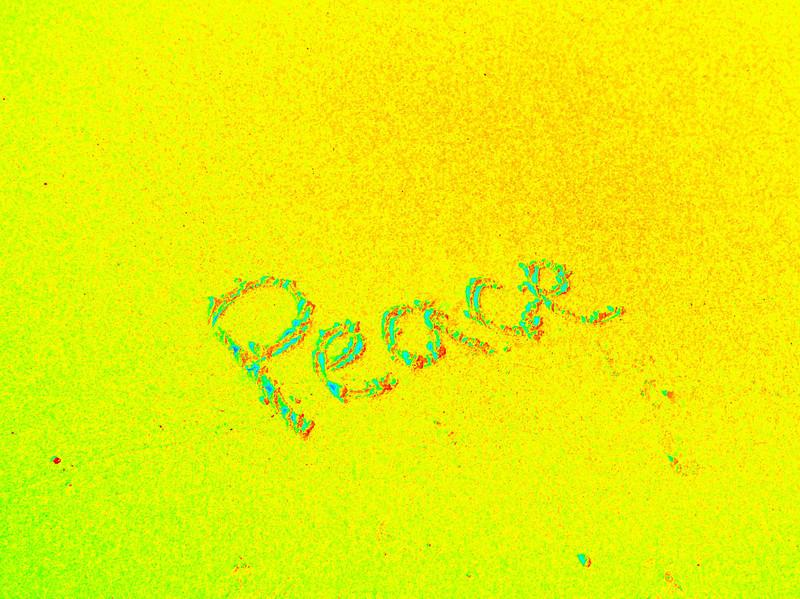 Dam Neck Beach (71).jpg