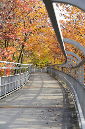 2013_1105 Seneca Park Fall Foliage