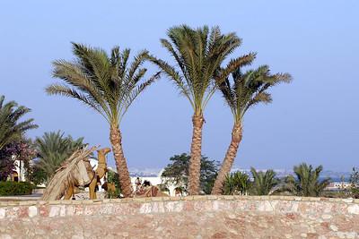 The Oberoi Sahl Hasheesh, Hurghadha
