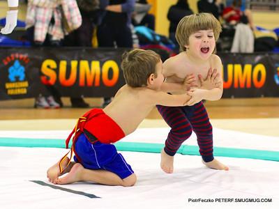 Poland Sumo Cup Warsaw december 2012