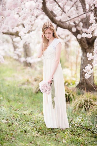 Cherry Blossoms (134 of 182).jpg