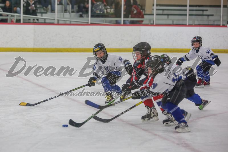 Blizzard Hockey 111719 7433.jpg
