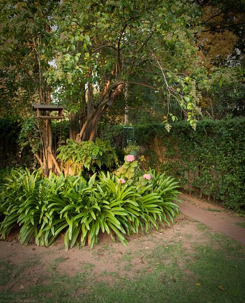 Brigitte's Garden