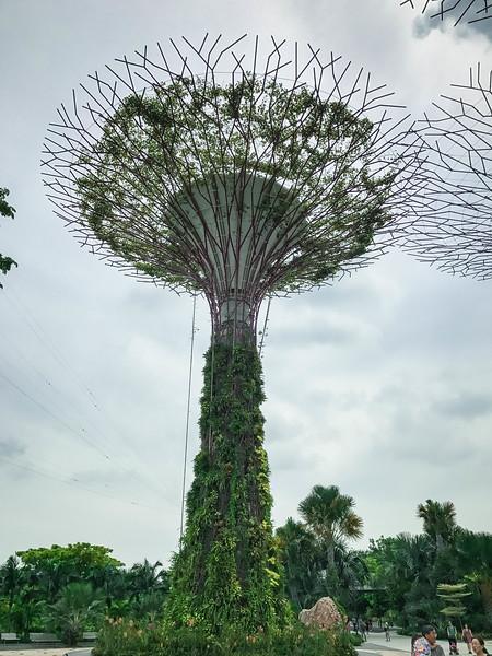 Singapore-191.jpg