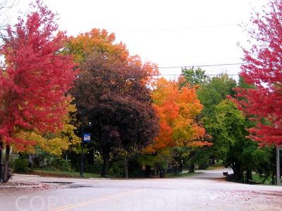 Oswego, IL (color)