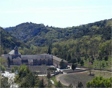Abbaye de Senanques 2002
