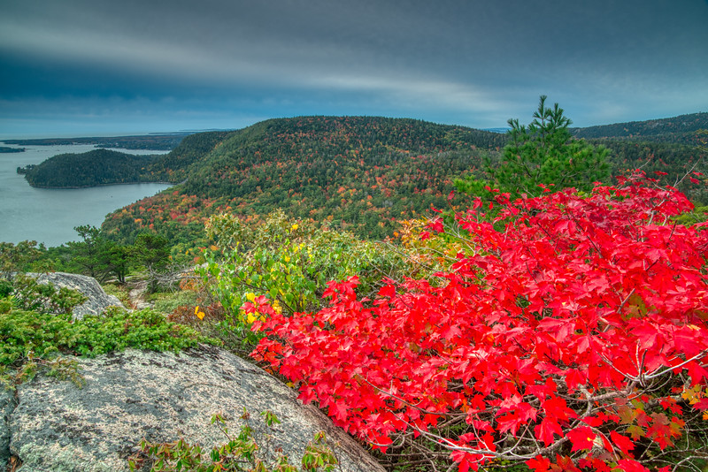 Acadia NP Fall 2019-52.jpg