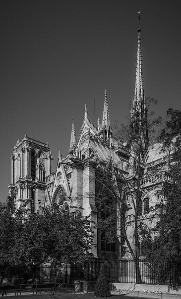 Notre Dame IV