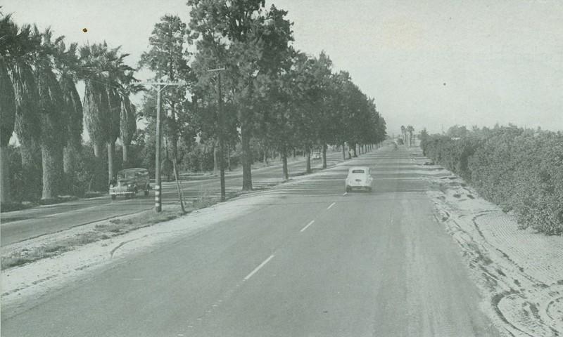 1943-01-CAHiPub-16.jpg