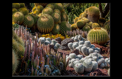 Huntington Gardens, CA