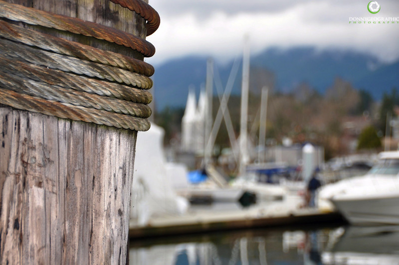 A wooden piling