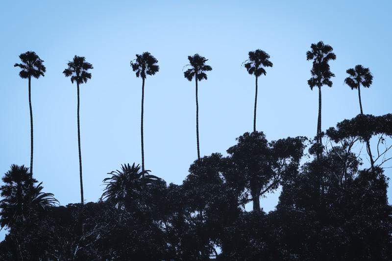July 17 - Santa Monica.jpg
