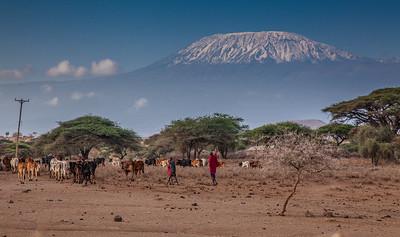 Kenya & Tanzania 2014