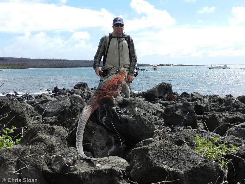 Chris with Marine Iguana at Floreana, Galapagos, Ecuador (11-22-2011).jpg