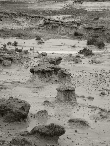 BW_GreatPlainsVacation_0103.jpg