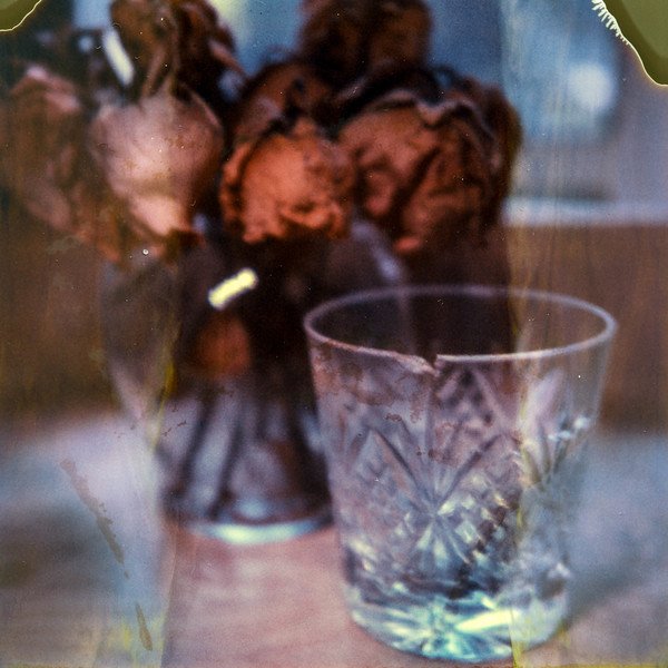 polaroid-glass-flowers006.jpg