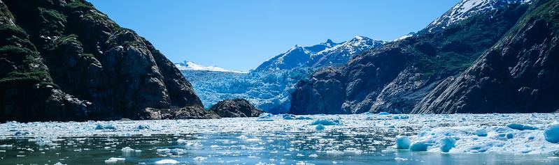 Alaska Cruise-0769.jpg