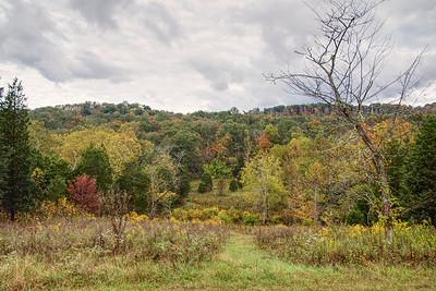 The Farm (Adams County, OH)