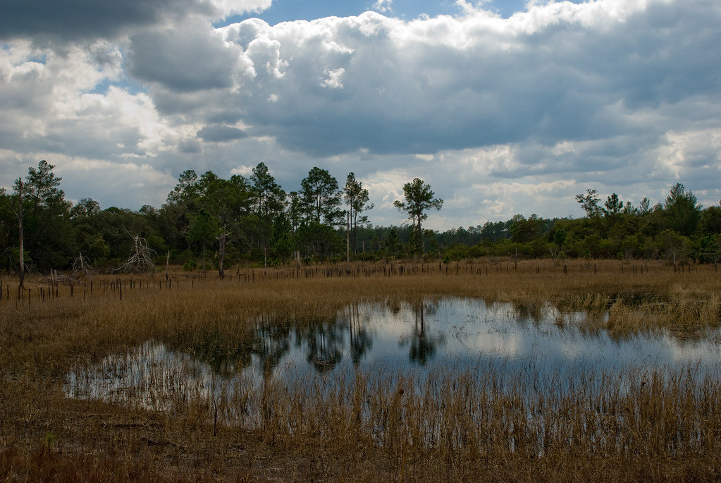 Tibet-Butler Preserve - Outdoor activities in Orlando Florida