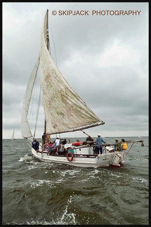 2013  54th Annual Skipjack Race Deale Island, Md