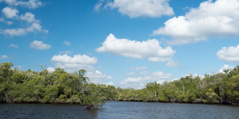 Everglades-20-Pano i2.jpg